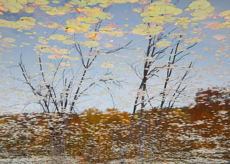 Reflection 20 Photography Art | MPF Gallery