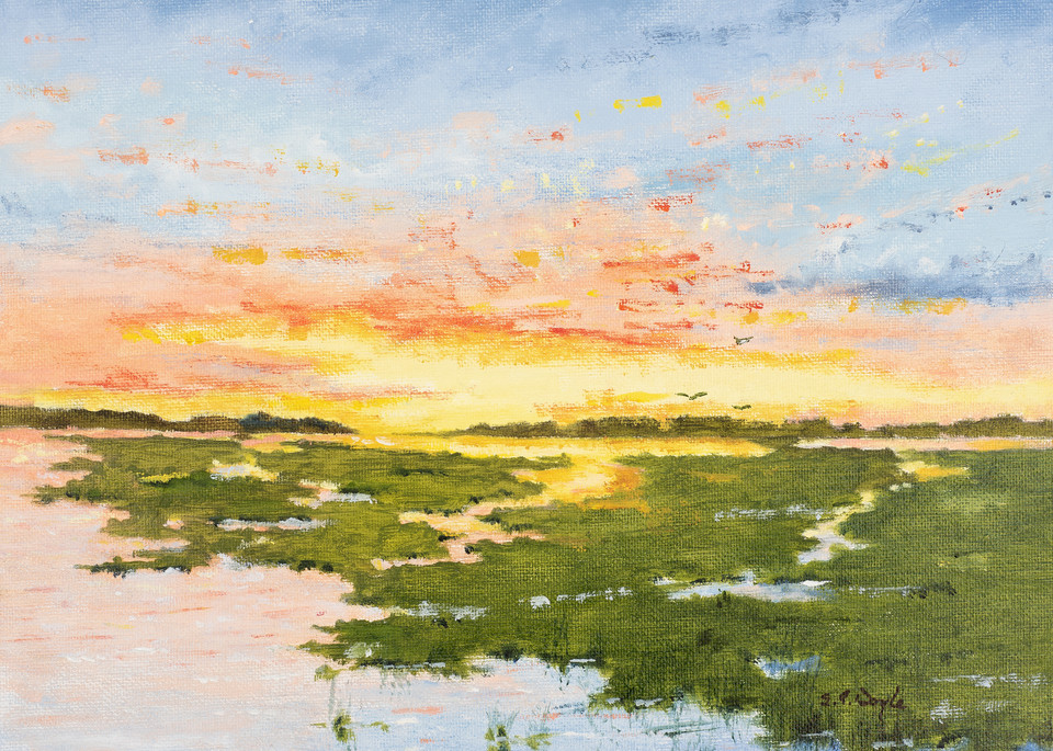 Splendid Sunrise  Art   Chris Doyle Fine Arts