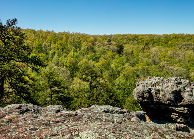 Pano Of Kings Bluff View 9858 Photography Art | Koral Martin Healthcare Art