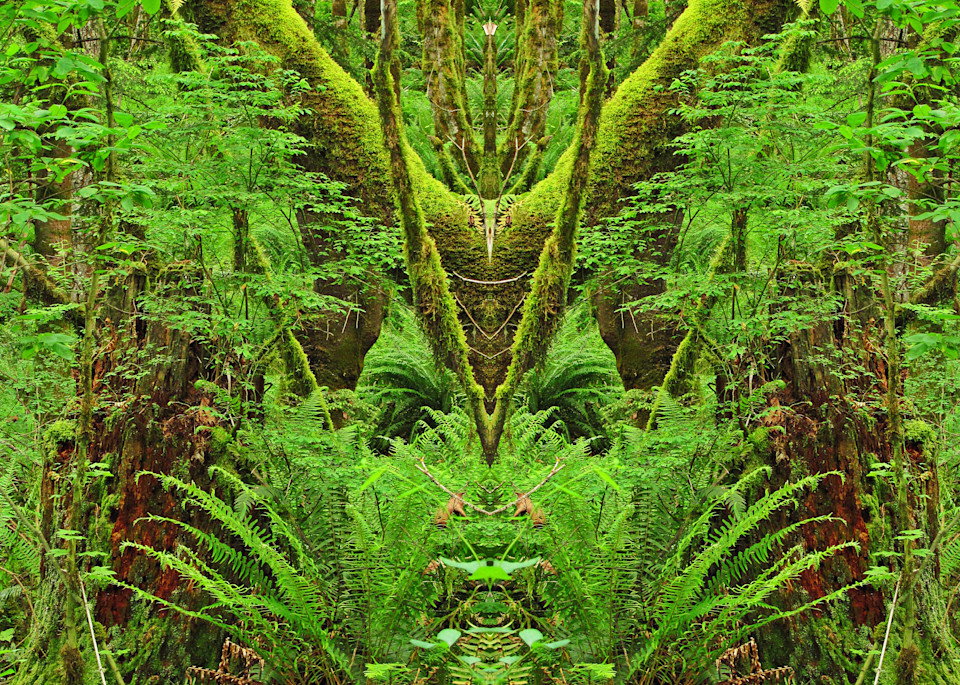 Mirror 339_Queen Of The Forest