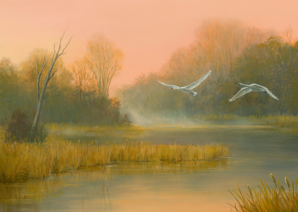 Autumn In The Marsh With Swans Flying Overhead Art | Tarryl Fine Art