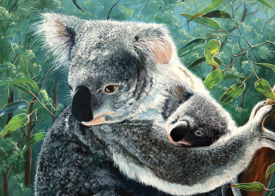 Koala and Baby - A MotherŐs Love