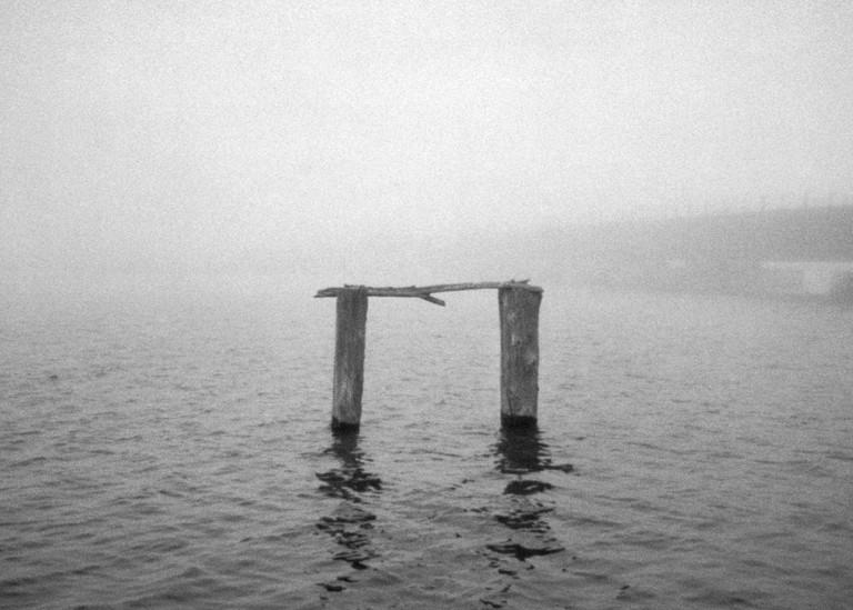 Wood Pilings Photography Art | Julian Whatley Photography