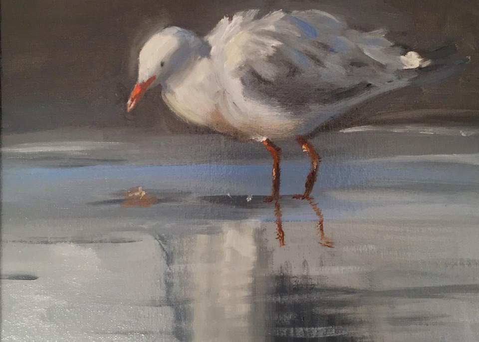 Jonathan Seagull Art | Scott Dyer Fine Art