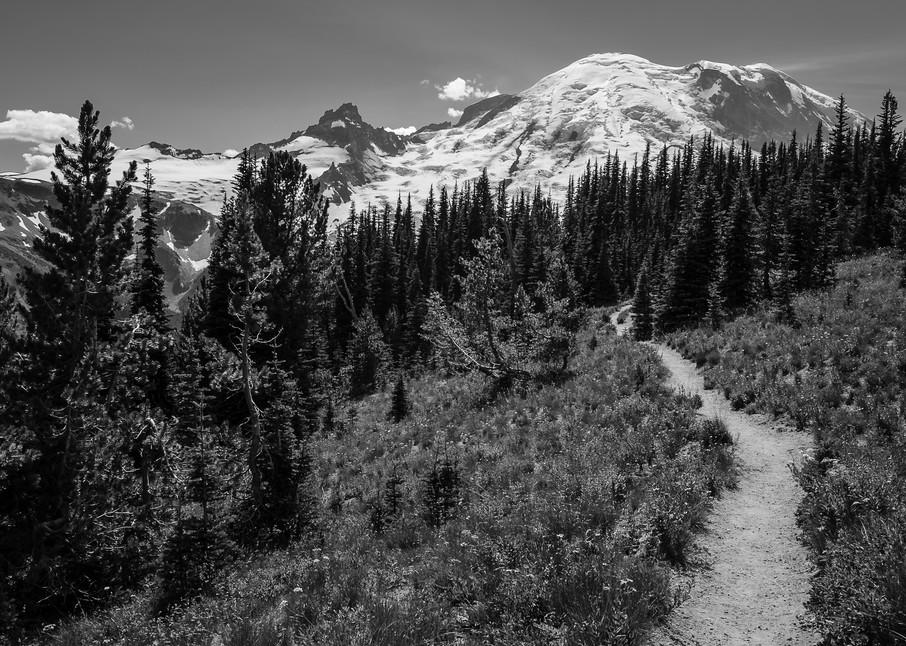 Silver Forest Trail, Mount Rainier, Washington, 2016