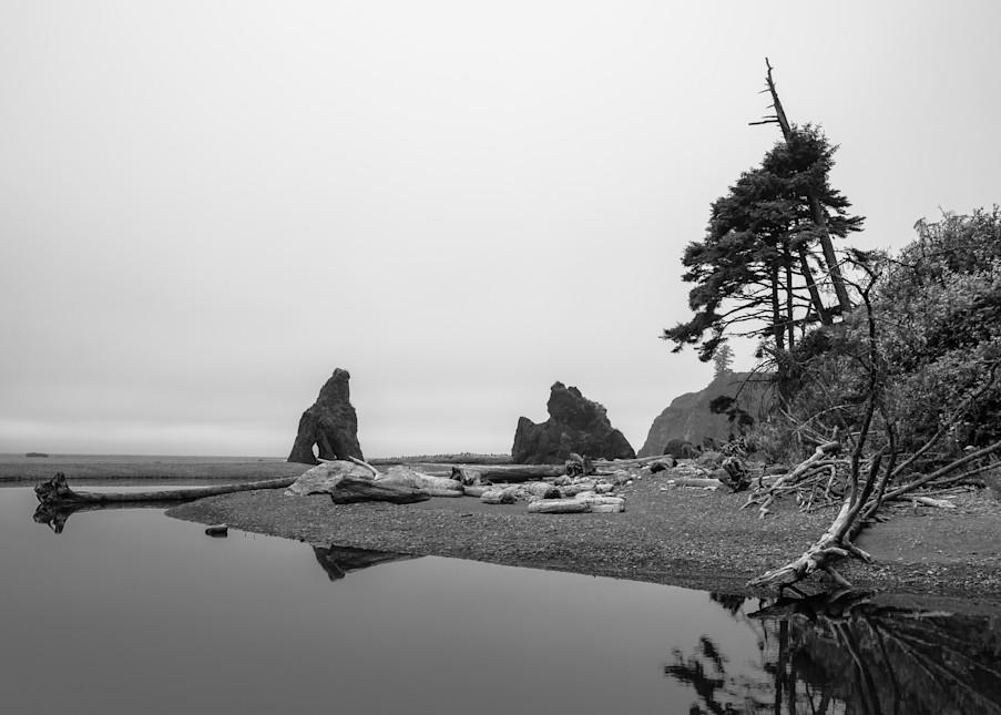 Shoreline, Ruby Beach, Olympic National Park, Washington, 2013