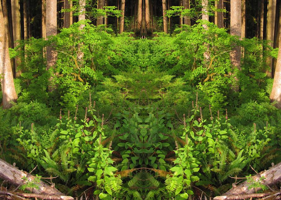 Mirror 1052 The Lion In The Woods Art   Loree Harrell Art