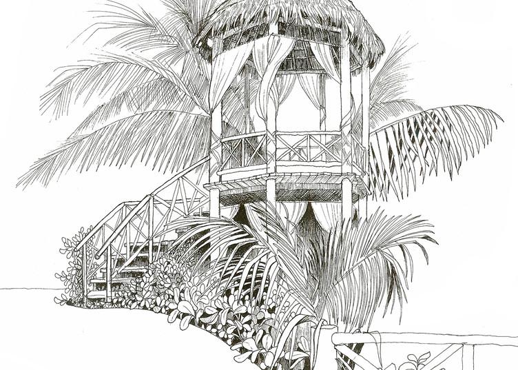 sketch, line drawing