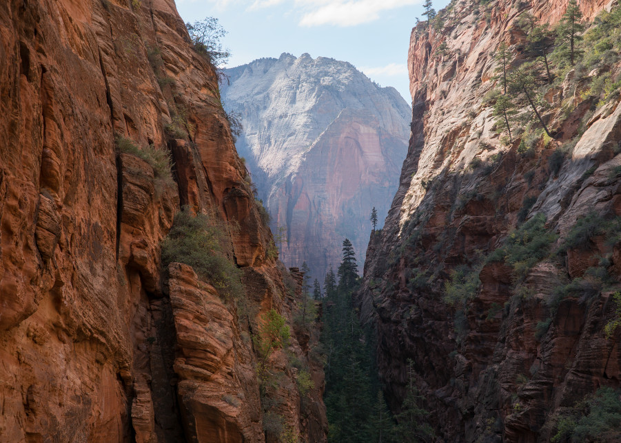 Zion National Park #2 Photography Art | Kit Noble Photography