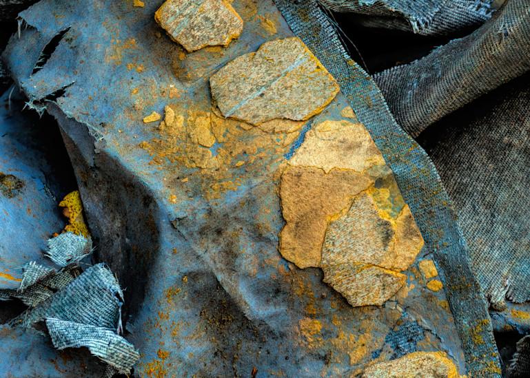 Golden Leaf Photography Art | Monty Orr Photography