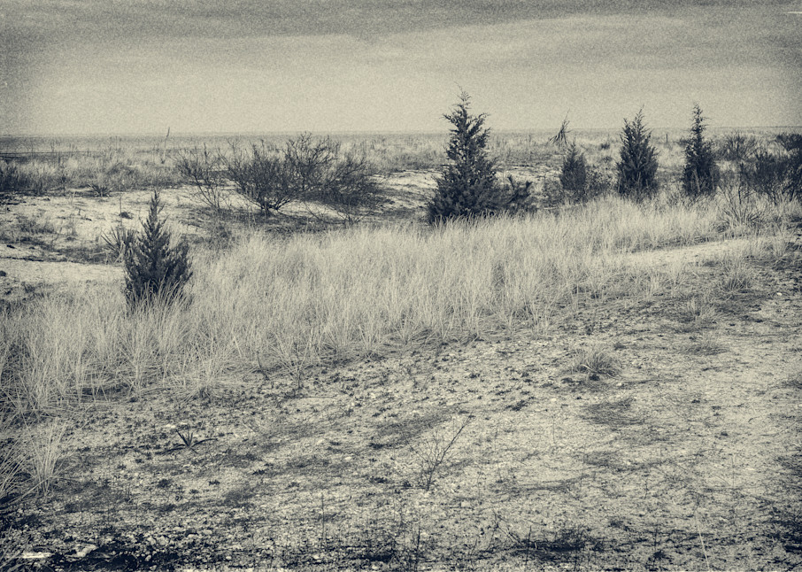 Slaughter Beach   Delaware Photography Art | David Frank Photography