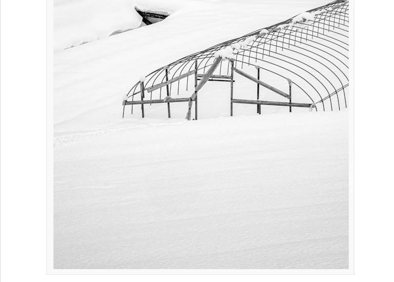 Tunnel Cloche Art | Roy Fraser Photographer