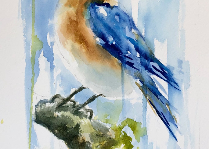 Blue bird, watercolor painting
