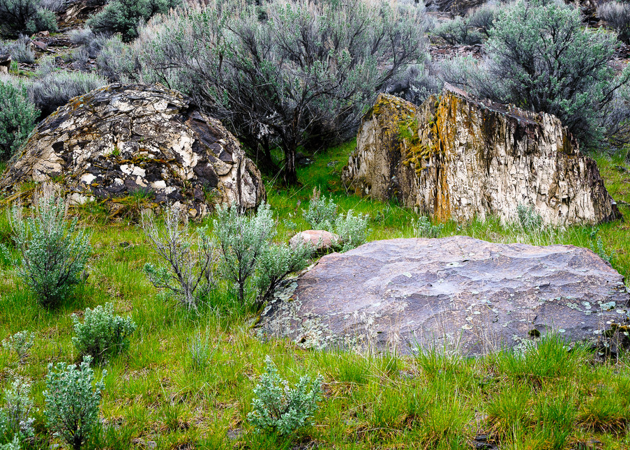 Three Rocks, Potholes Coulee, Washington, 2017