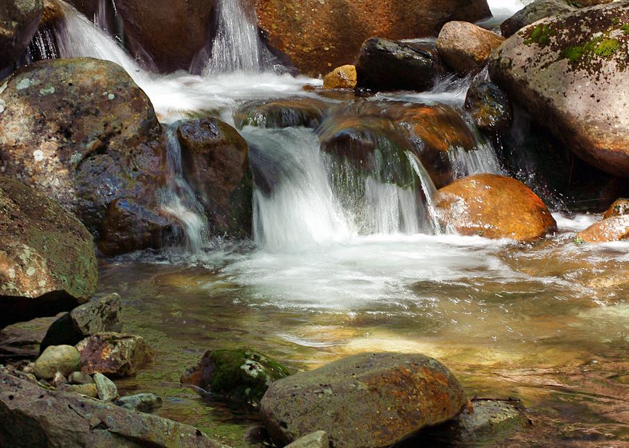 Gorge Brook Trail Mt Moosilauke Photography Art | Hatch Photo Artistry LLC