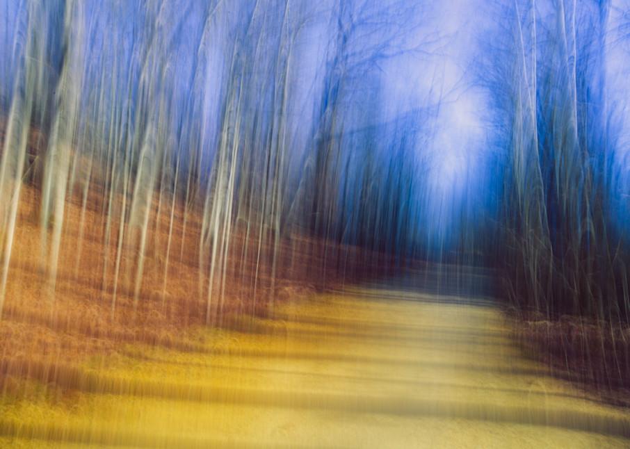 Nature Abstract 4818 Photography Art | Dan Chung Fine Art