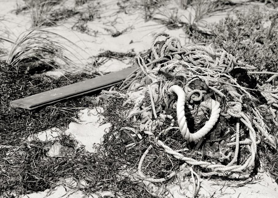 Tide Wrack Photography Art | Hatch Photo Artistry LLC