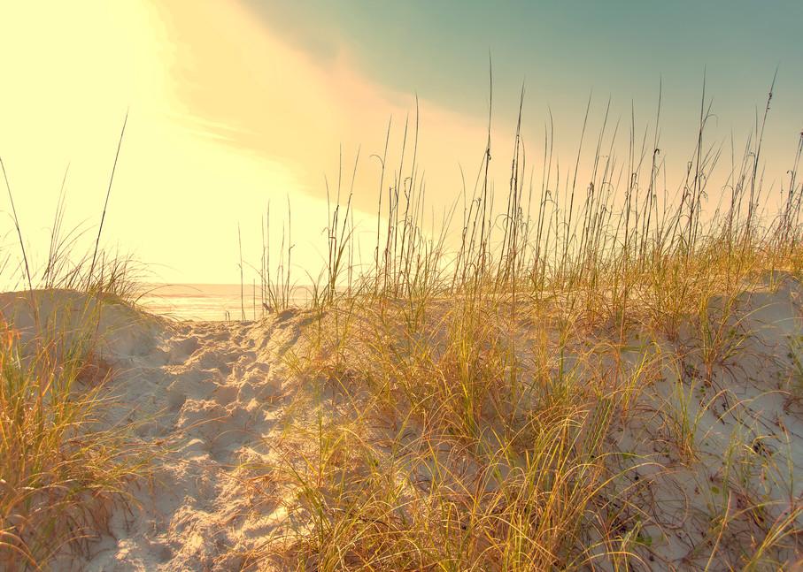 Sunset on the dune, Amelia Island