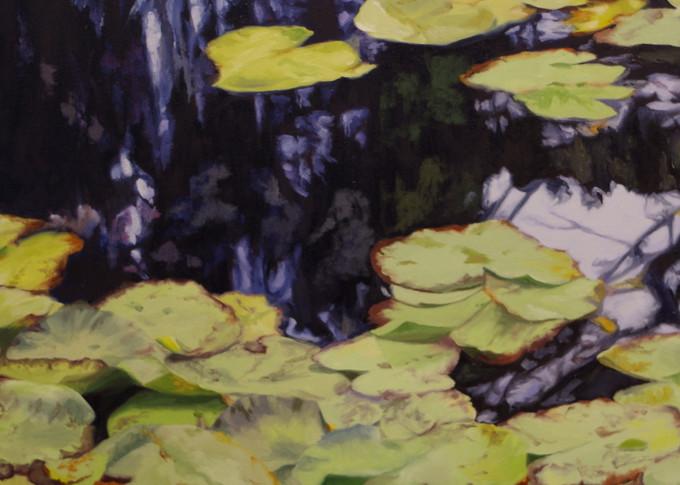 Water Lilies In France Art | Helen Vaughn Fine Art