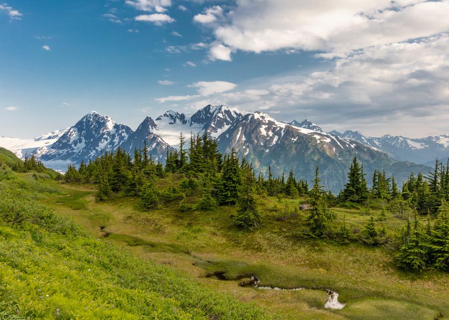Spencer Glacier Alpine