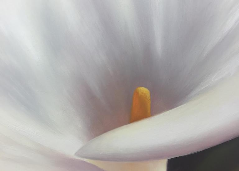 Calla Lily Ii Art   Gema Lopez Fine Arts