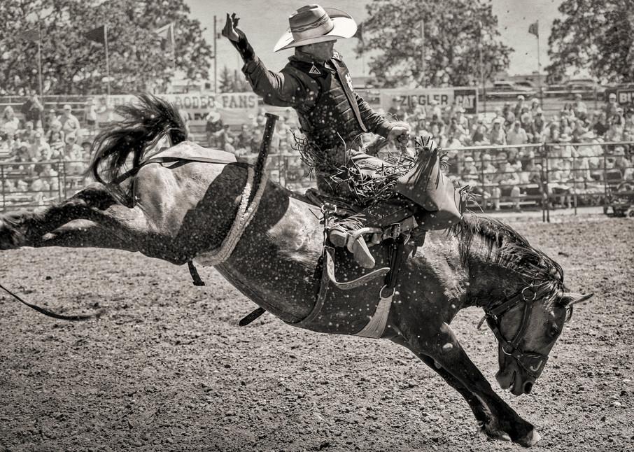 Audy's Wild Ride