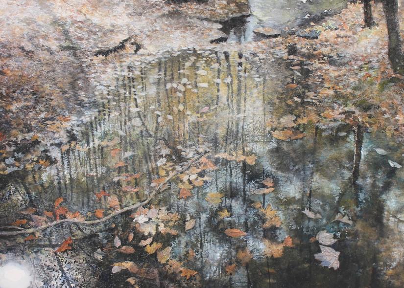 Autumn Kaleidoscope Art   Romanova Art