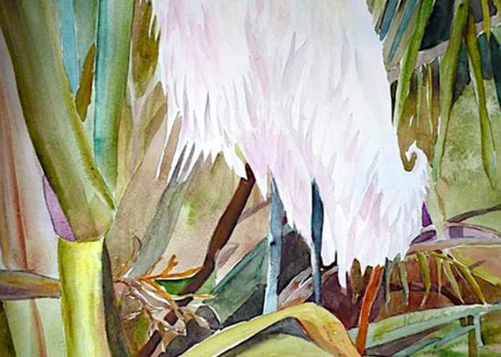 Nesting Egret, From an Original Watercolor Painting