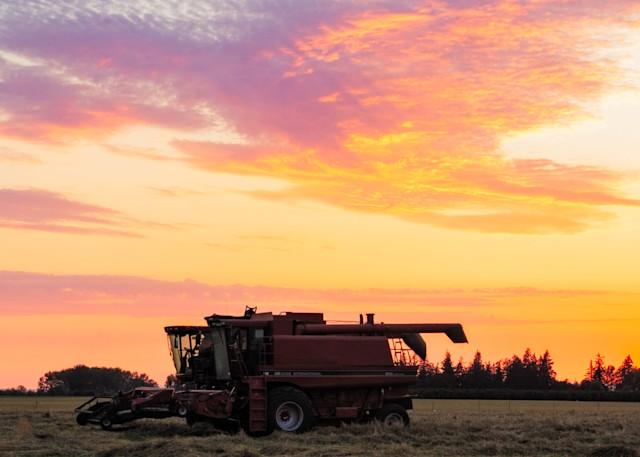 Farmland 2 Photography Art | Vldn Taylor Photography