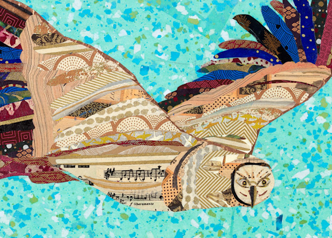 Flying Owl Art   capeanngiclee
