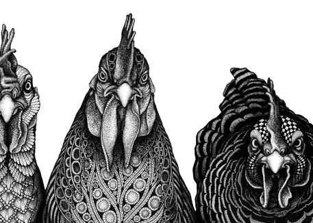 """Rulers Of The Roost Art 