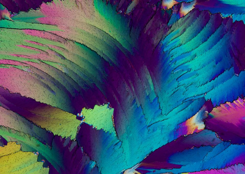 All Mixed Up 3 (Urea Crystals) Art | Carol Roullard Art