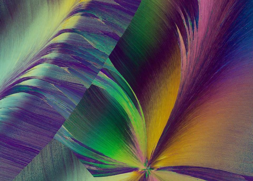 Vanilla Silk (Vanillin Crystals) Art | Carol Roullard Art