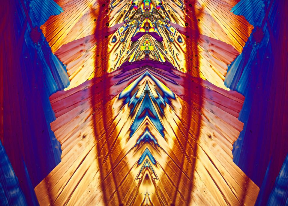 Conversation (Lidocaine Crystals) Art | Carol Roullard Art
