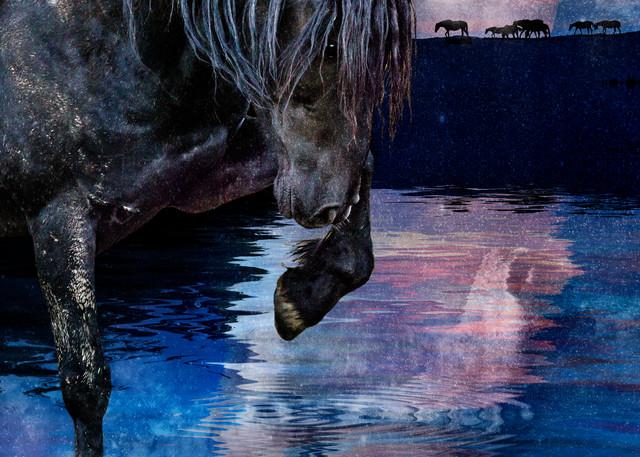 Lakota's Legacy Photography Art   Deb Little Photography