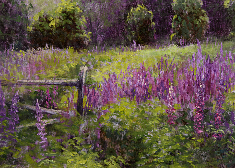 Lupine Fields Art | Liliedahl Art