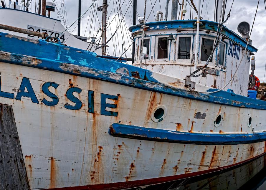 Lassie Photography Art | Ken Smith Gallery