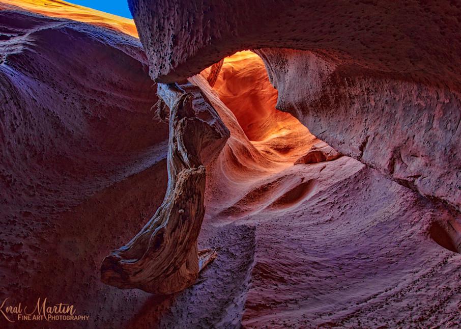 Spooky Gulch Slot Canyon 2369  Photography Art   Koral Martin Healthcare Art