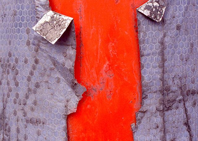 Fish Cone Abstract Orange Fine Art Print – Sherry Mills
