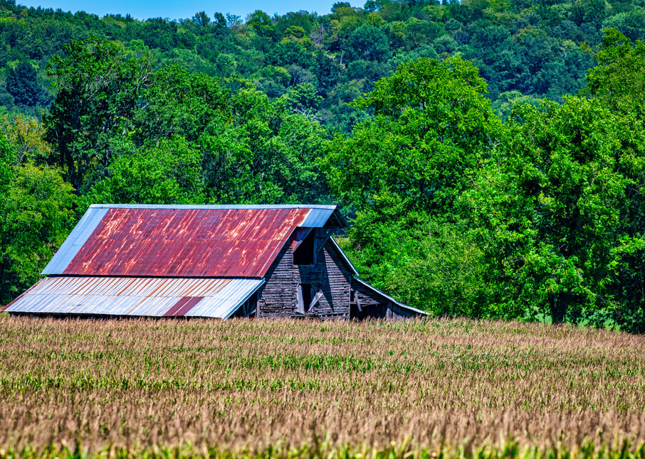 Tennessee Farm Life