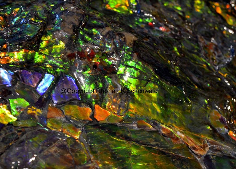 Ammolite 2 Art | Rhona LK Schonwald