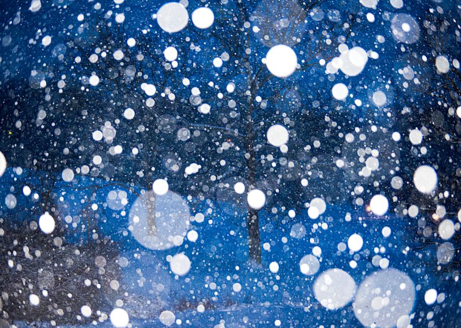 Snow Falling On Maple 2 Photography Art   Hatch Photo Artistry LLC