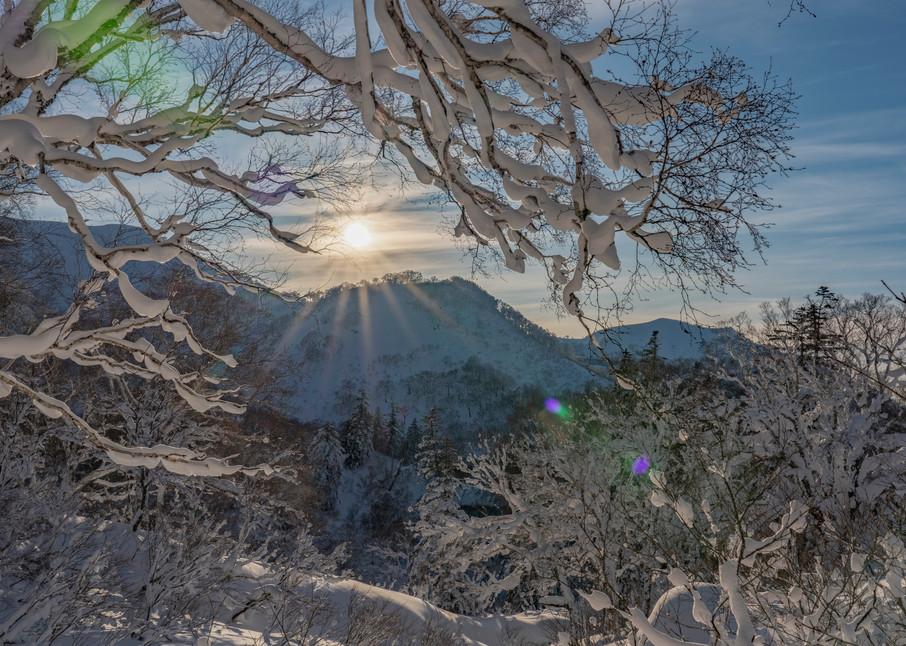 Last Light In Japan  Photography Art | Alex Nueschaefer Photography