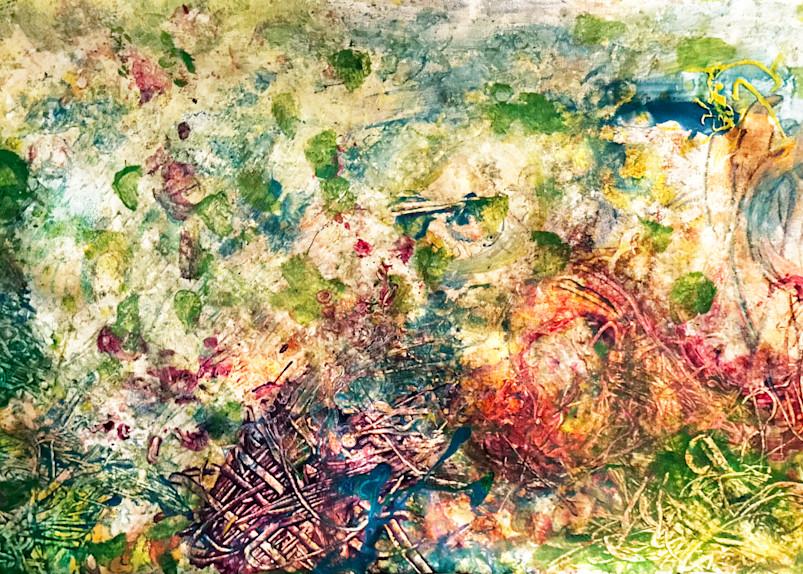 Nature Art | Artist Rachel Goldsmith, LLC