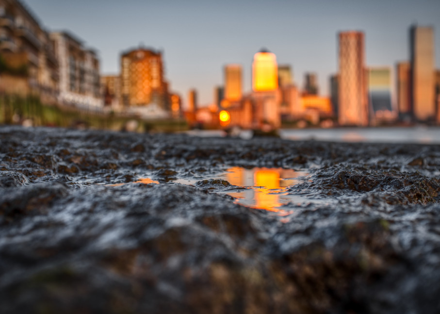 On Golden Puddle Art | Martin Geddes Photography
