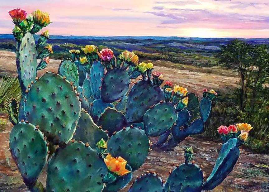 Cactus Sunrise Art | Channe Felton Fine Art