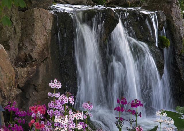 Botanic Gardens Waterfall Art | karenihirsch