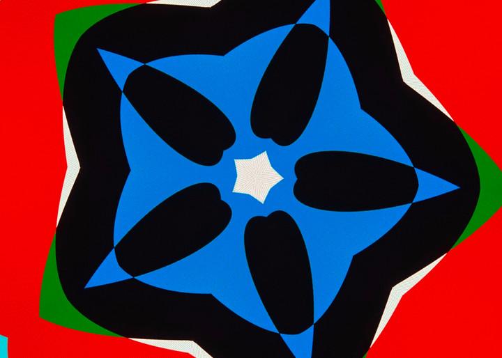 Petunia In Blue Art | karenihirsch