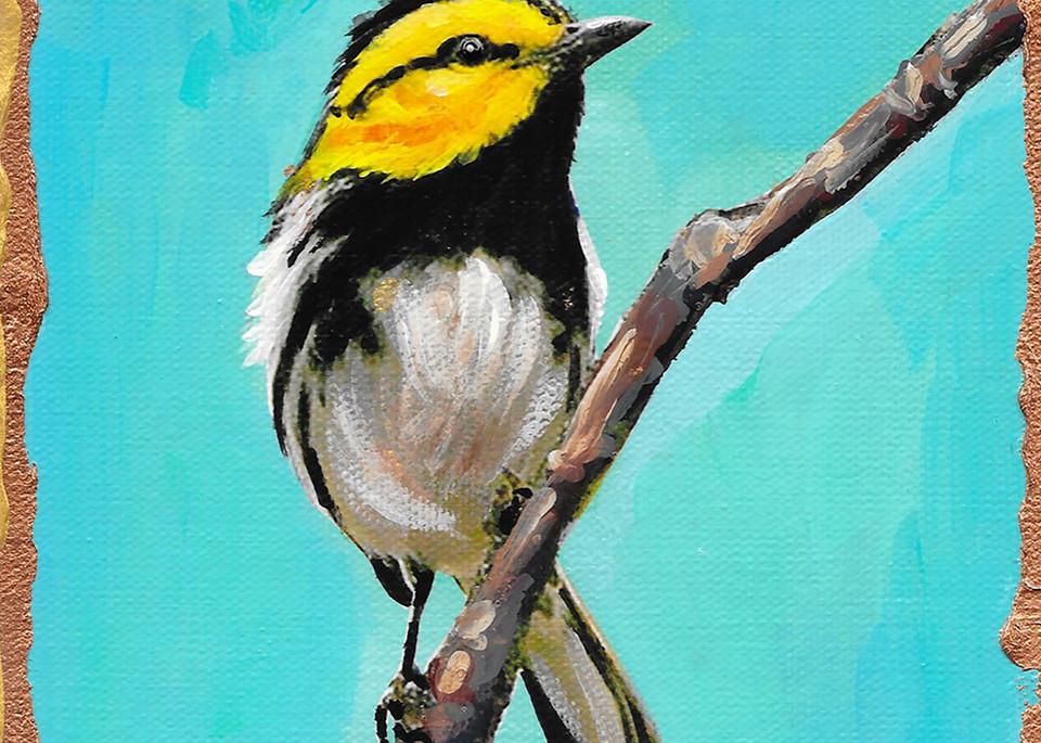 Golden Cheeked Warbler Art | Channe Felton Fine Art