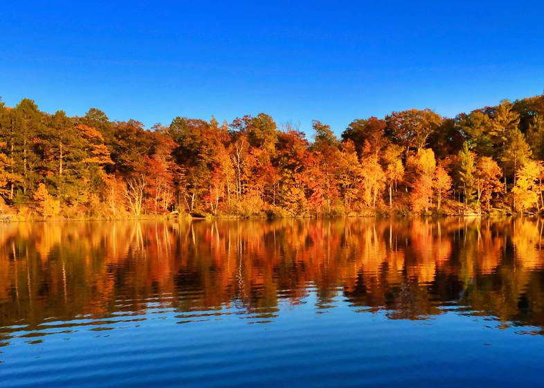 Fall Magic Deerwood 4
